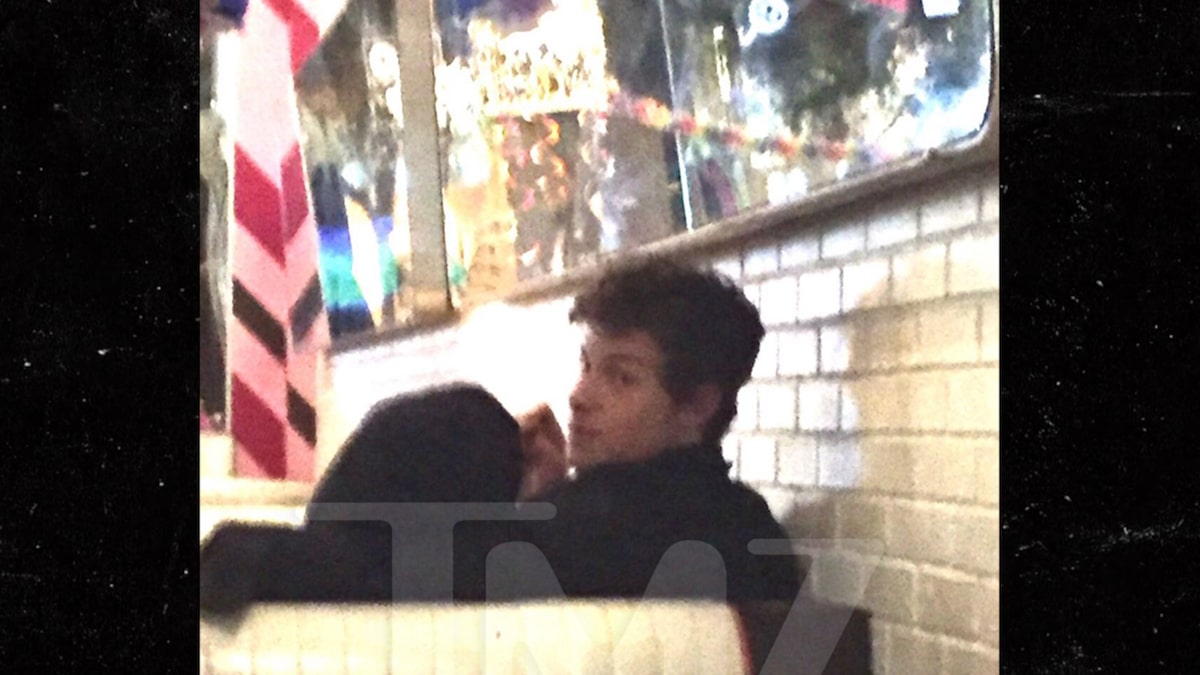 Shawn Mendes Cuddling With Camila Cabello During Late-Night Eats