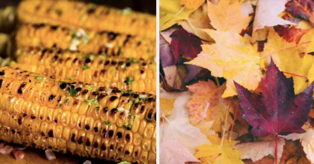 Choose Some Random Food Pictures And We'll Reveal Your Favorite Season