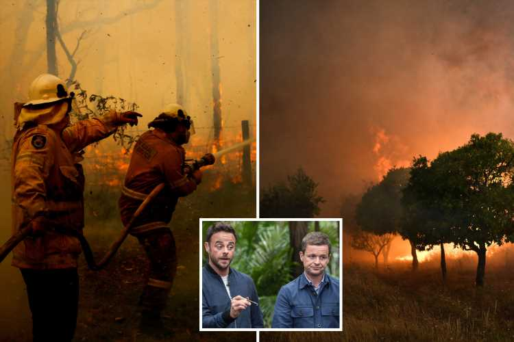 I'm A Celebrity 2019 'under threat' as out-of-control fires rage towards camp