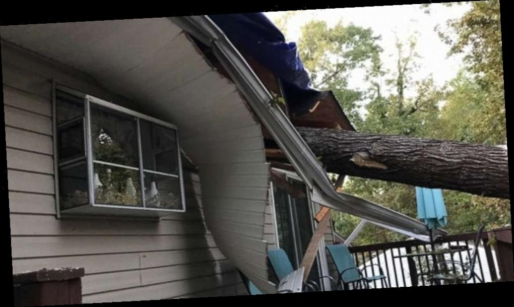 'That refrigerator saved our lives': Family rebuilds after tree decimates their home