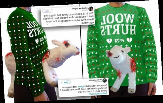 PETA sells 'wool hurts' sweater featuring bloody and bruised 3-D sheep