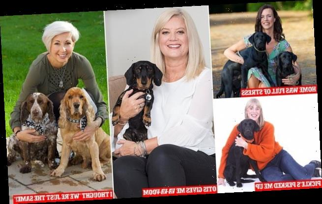 Dogs are the secret weapon for dealing with the menopause