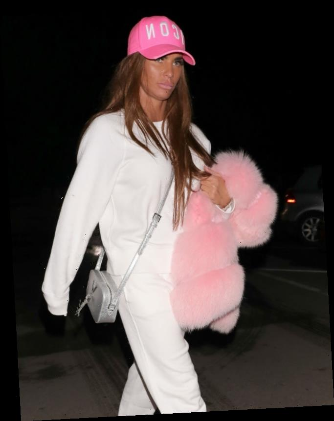Katie Price planning 'fresh start' in America after bankruptcy