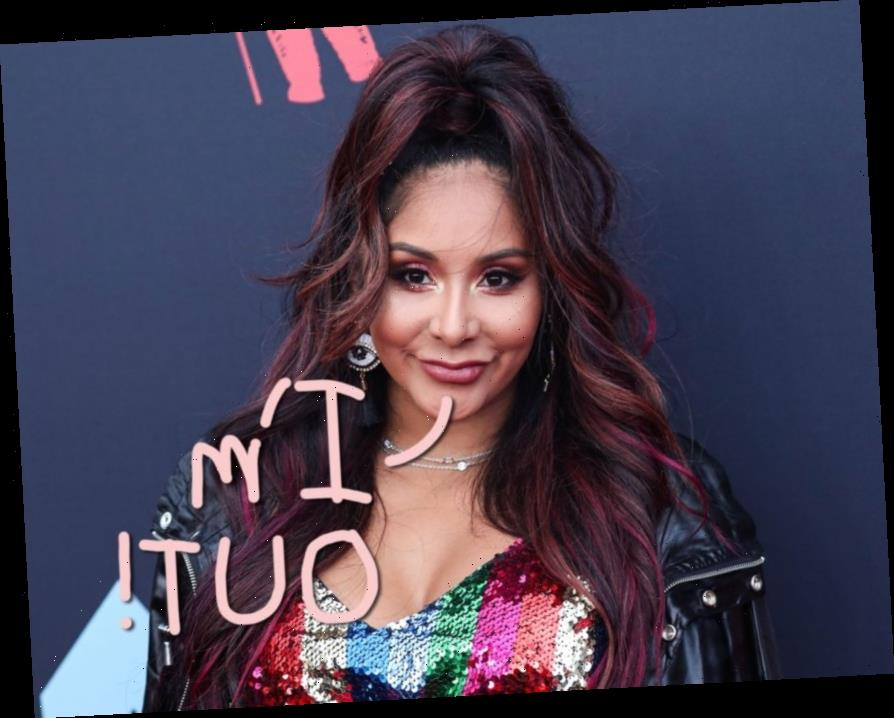 So THIS Is Why Snooki Retired From Reality TV!