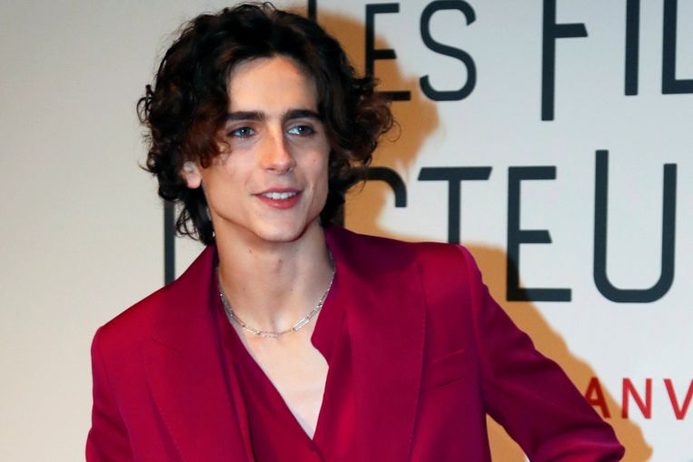Timothee Chalamet to play Bob Dylan in biopic