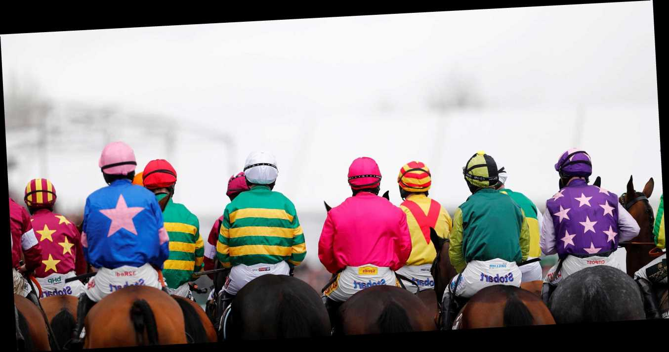 Cheltenham Festival tips: Novices' Chase trends – we help you find the winner of the race live on ITV at 4.50pm today