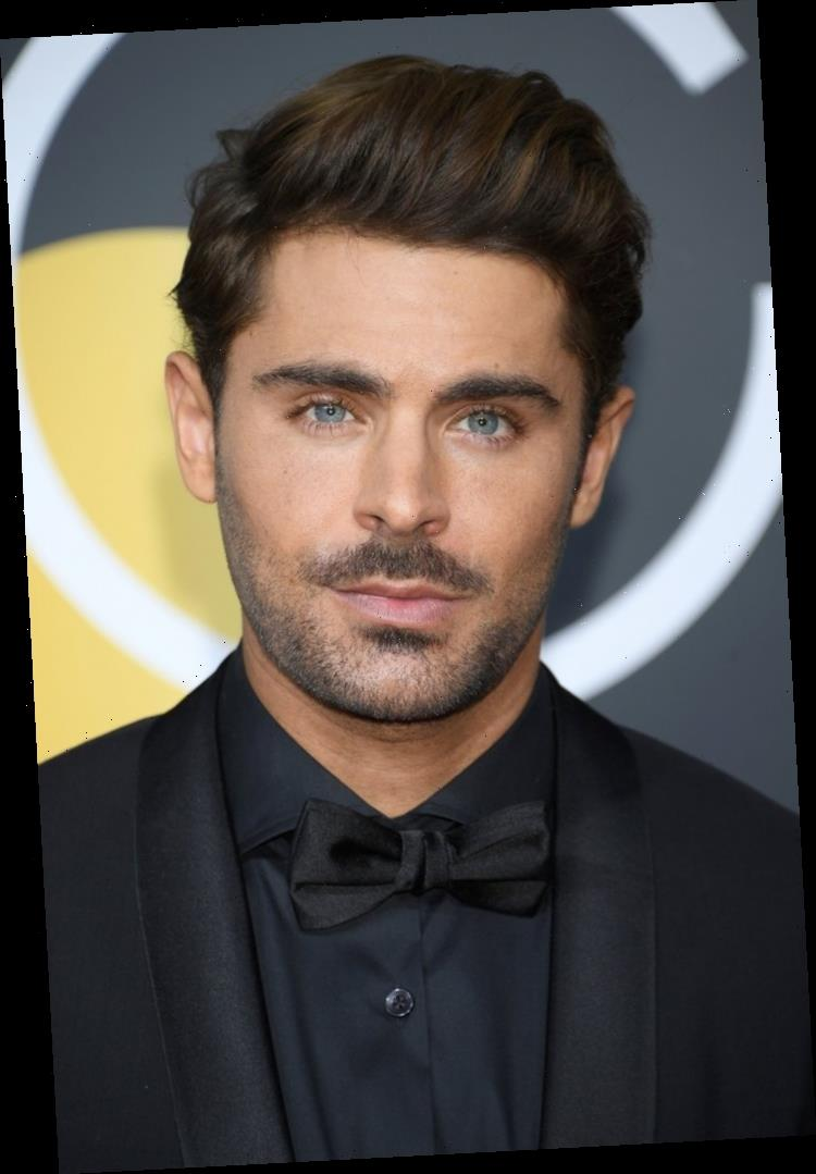 Fans Are Disappointed That Zac Efron Didn't Join the High School Musical Singalong