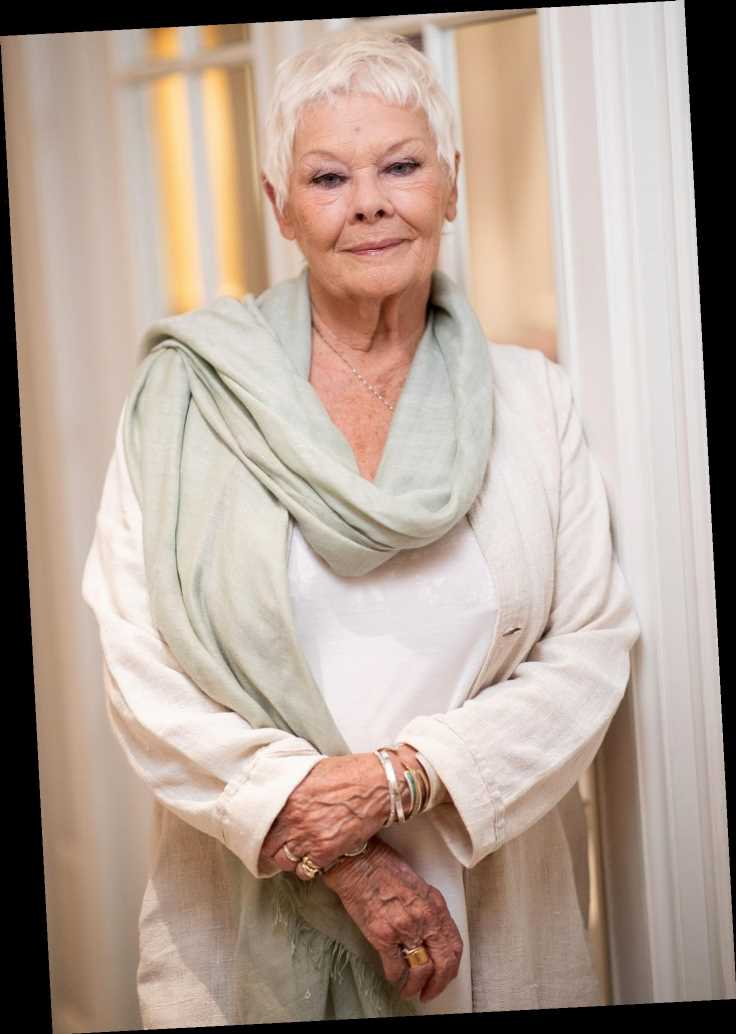 Judi Dench Fears Theaters Won't Reopen in Her 'Lifetime' Amid Coronavirus