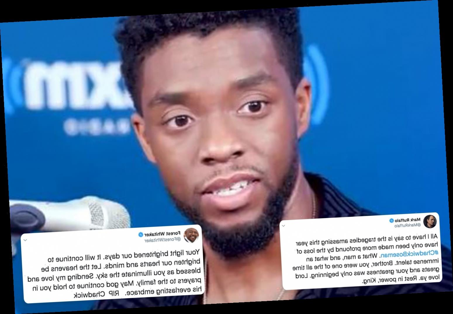 Chadwick Boseman's Black Panther and Avengers co-stars pay tribute to late actor after secret fight against colon cancer