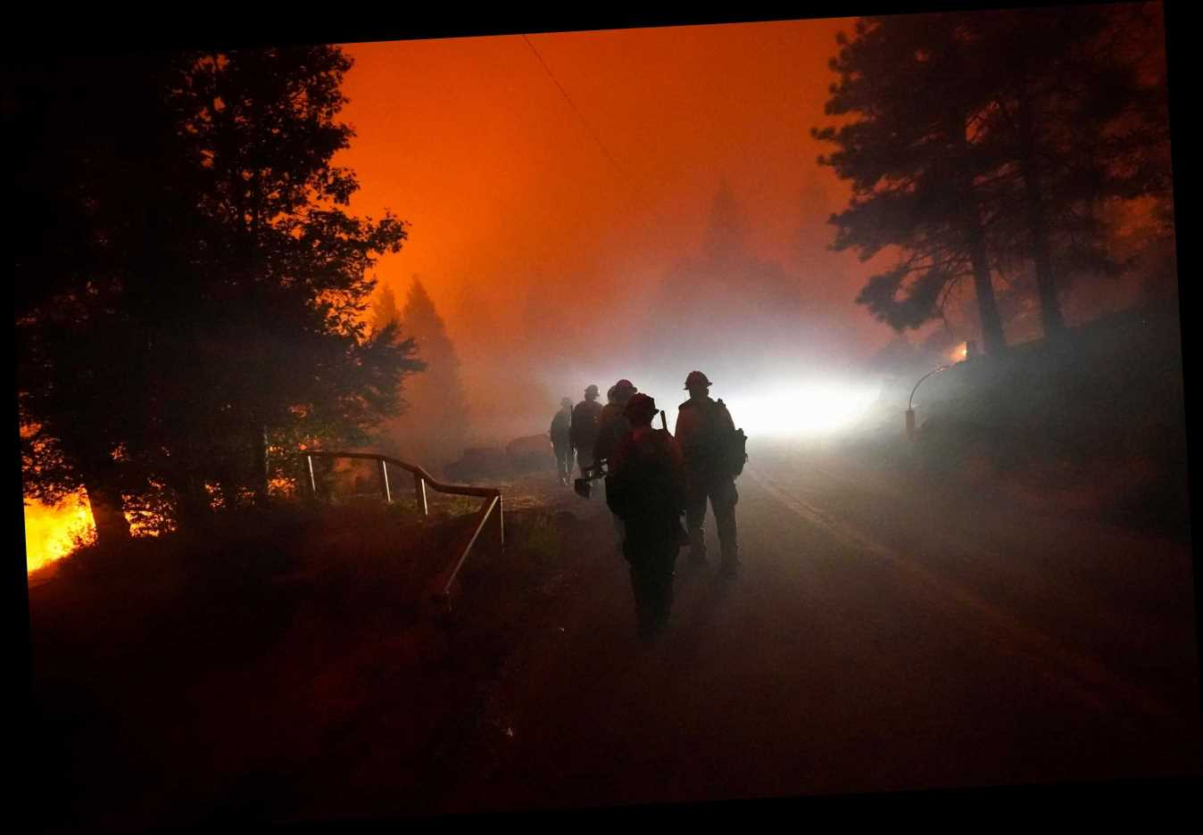 A Record 2 Million Acres Have Been Burned By California Wildfires This Year