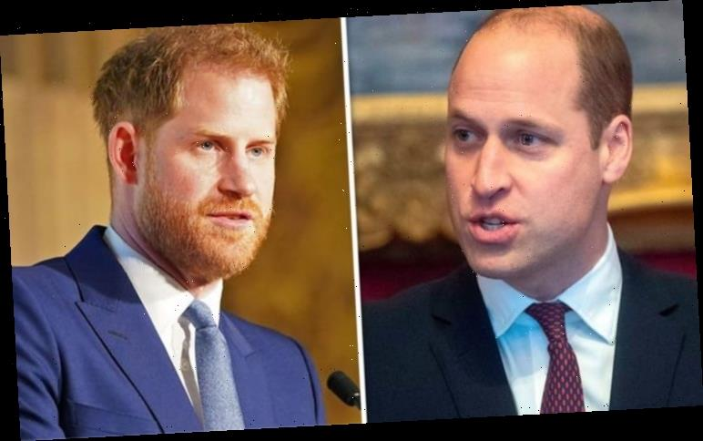 Prince Harry v Prince William: Expert exposes huge difference between brothers 'approach'