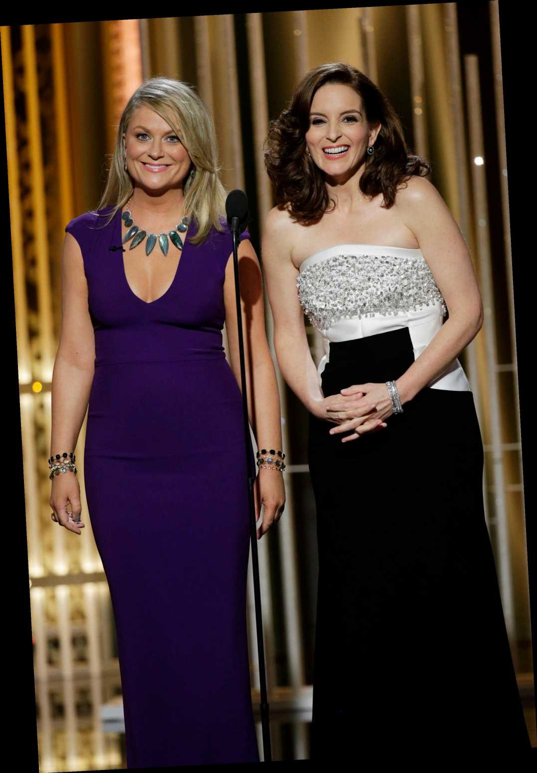 Amy Poehler Is Choosing Chaos For This Year's Pandemic Golden Globes