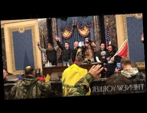 """Capitol Attack Video Reveals New Footage, Chilling Chants of """"F–k You Police!"""""""