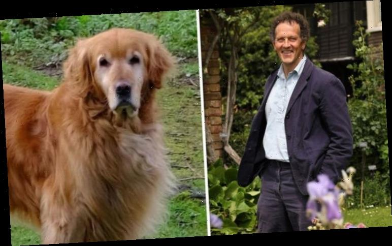 Monty Don: What has happened to Monty Don's dog Nigel?
