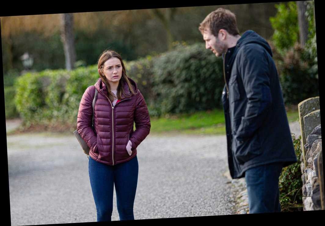 Emmerdale spoilers: Jamie Tate confesses he loves Dawn as he offers her a job at the vets – as ex Belle's replacement