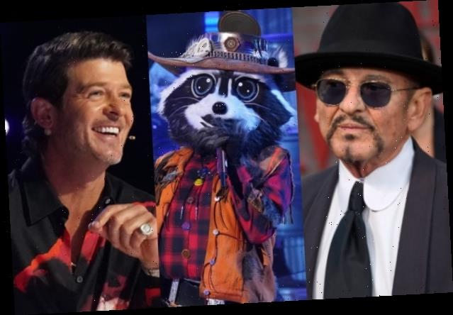 Robin Thicke Really Thinks Joe Pesci Would Do 'The Masked Singer' (Exclusive Video)