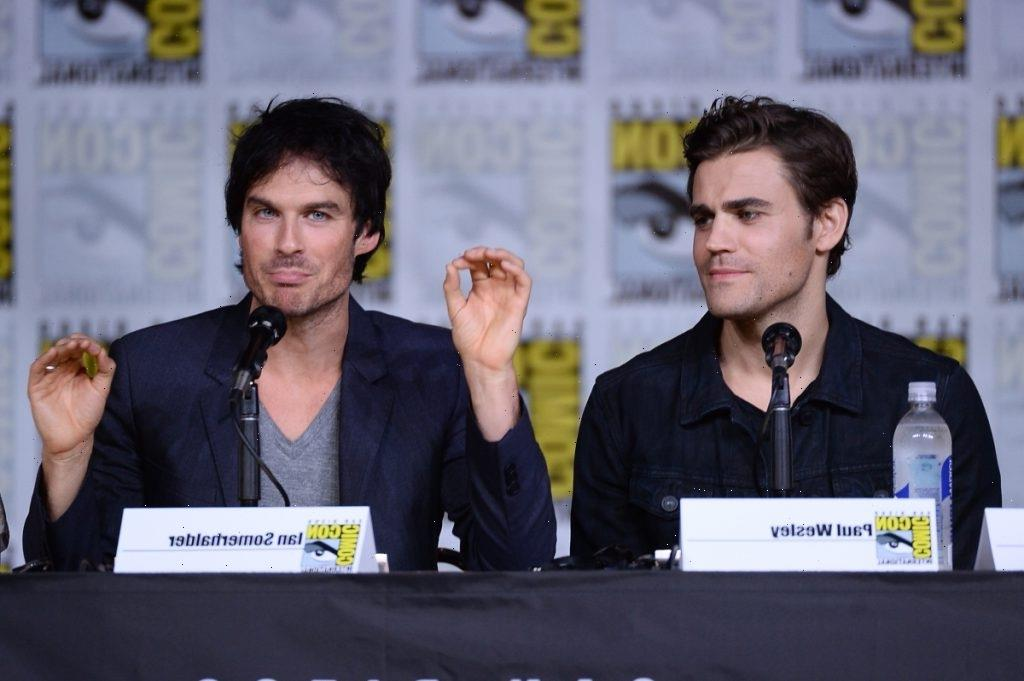 'The Vampire Diaries': Ian Somerhalder Envisioned a Different Finale for Damon and Stefan Salvatore