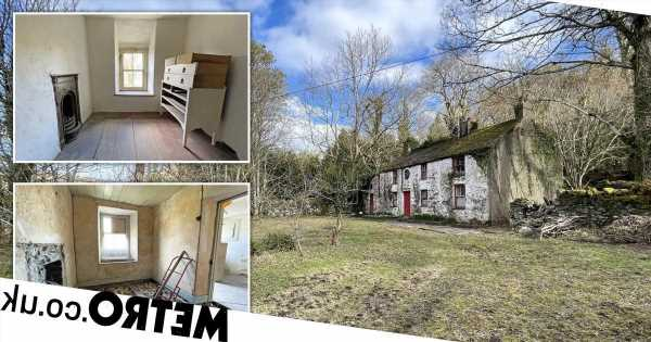 Farmhouse with views of Snowdonia is on sale for £200,000 – but it needs work