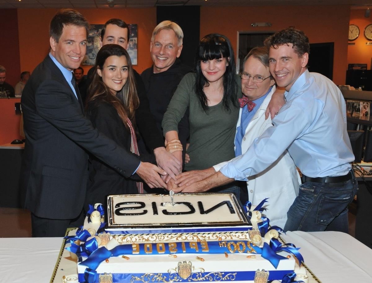 'NCIS': Pauley Perrette and Sasha Alexander Left the Show For 2 Very Different Reasons
