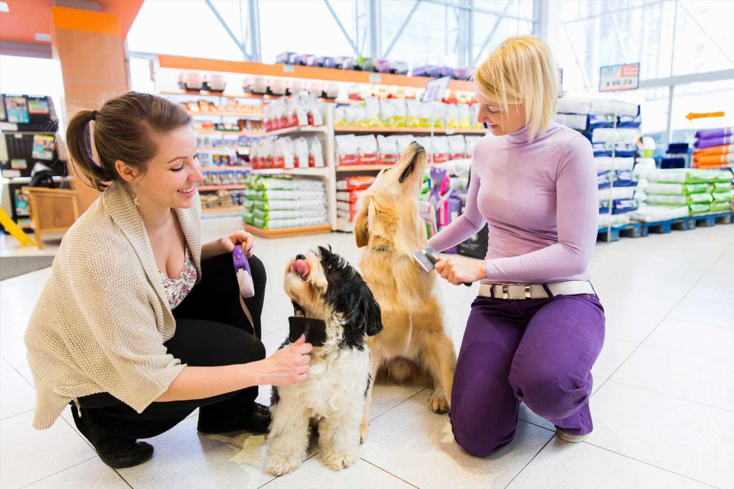 Shops and banks are letting customers take their dogs in to boost spending – see which ones