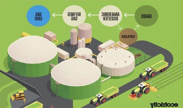 Plans for Britains first gas from grass plant revealed