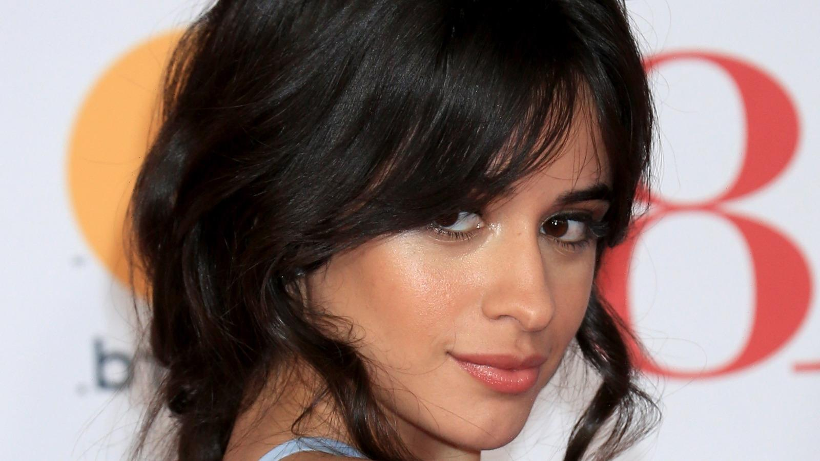 The Huge Hit Song Camila Cabello Turned Down